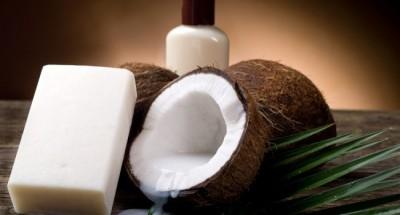 shampoo de coco caseiro