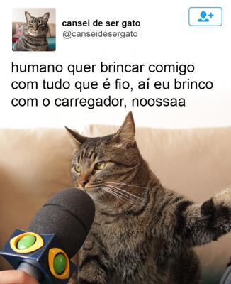 cansei_de_ser_gato3