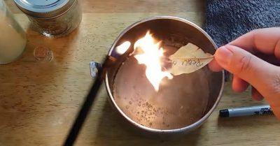 queimar-louro