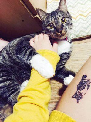 tattoo-gato12